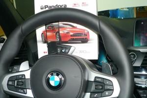Установка gsm сигнализации Pandora DXL 3910 PRO на BMW X3 (G01)